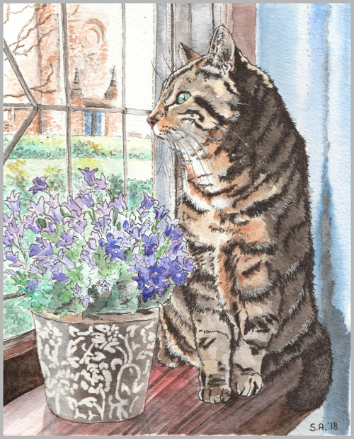 Watercolour and Ink on Watercolour paper - an example of a full detailed background and subject